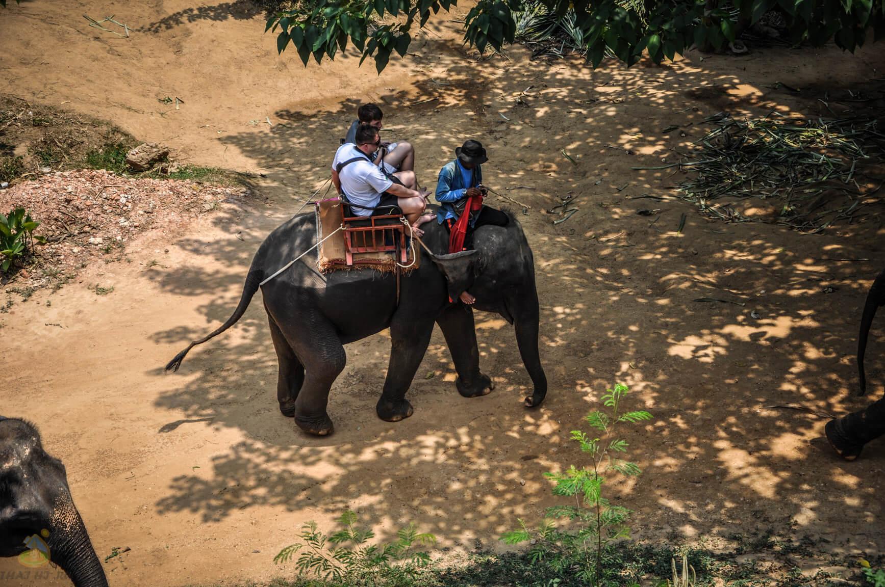 Слоновая деревня, Квай