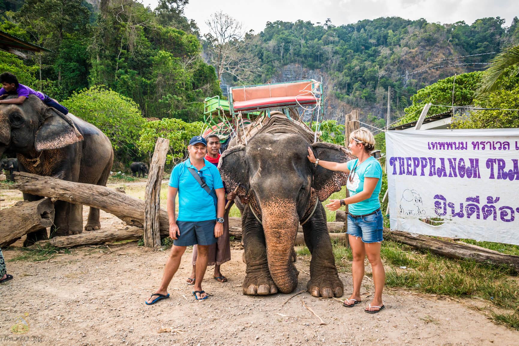 Благодарный слоник в Краби