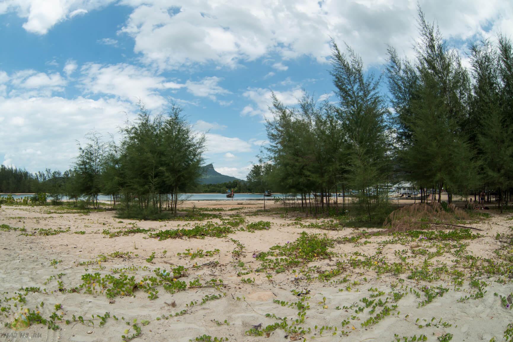 Noopharat Thara Beach - растительность