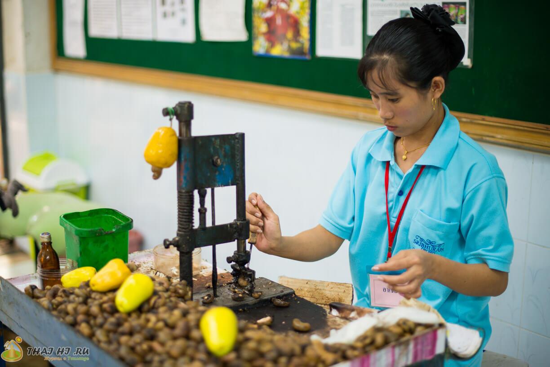 Производство кешью Тайланд