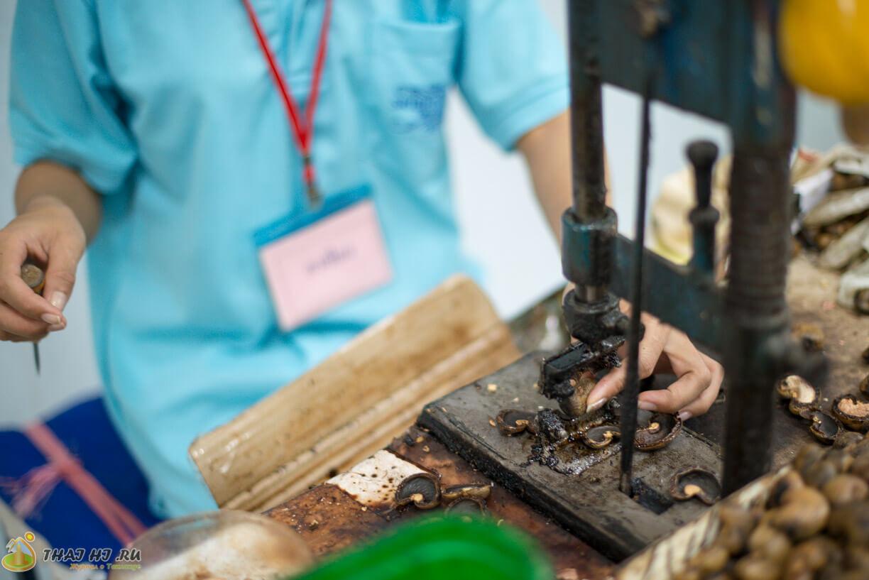 Кешью - как производят орех
