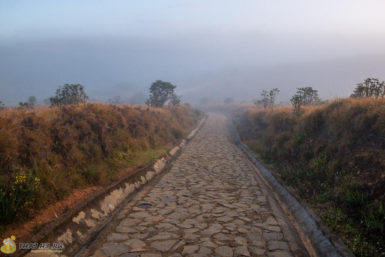 Дорога в Хортон Плэйнс пешком