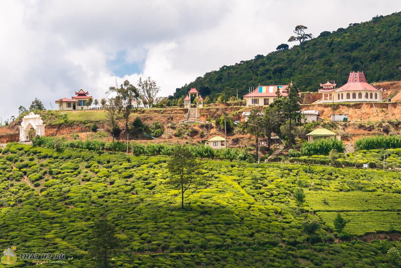 Фото Нувара Элии, Шри Ланка