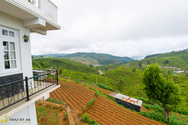 Вид из отеля в Нувара-Элия