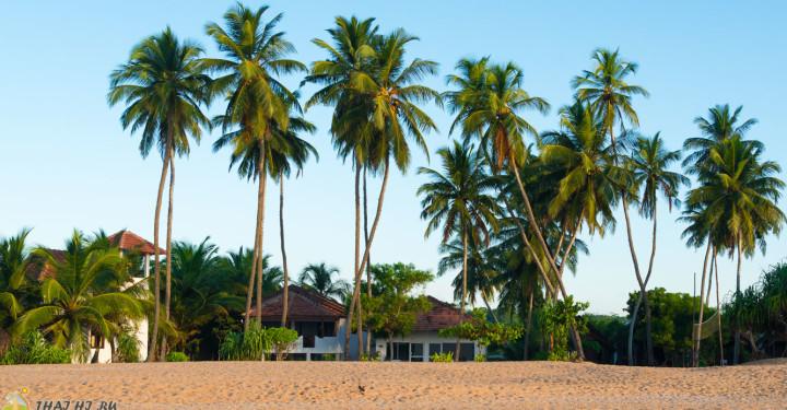 Pastissade Beach в Тангалле