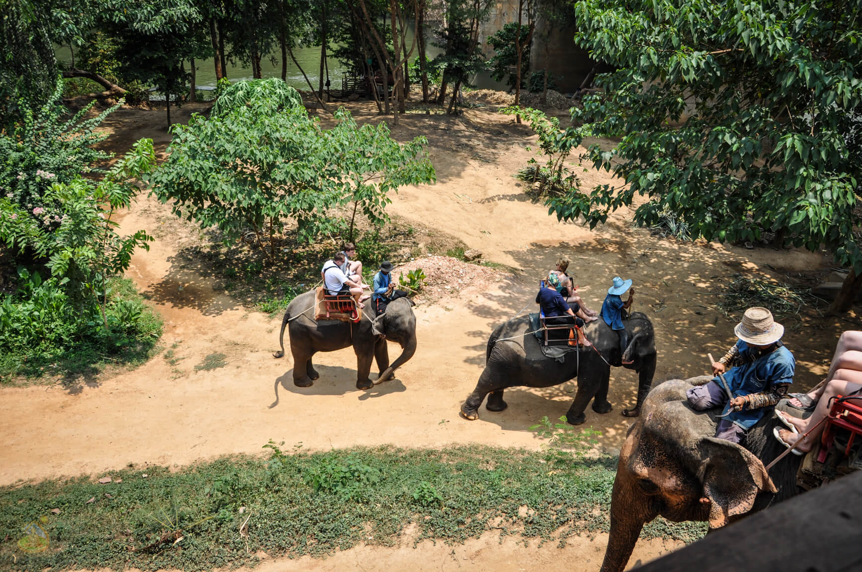 В слоновой деревне на Квай