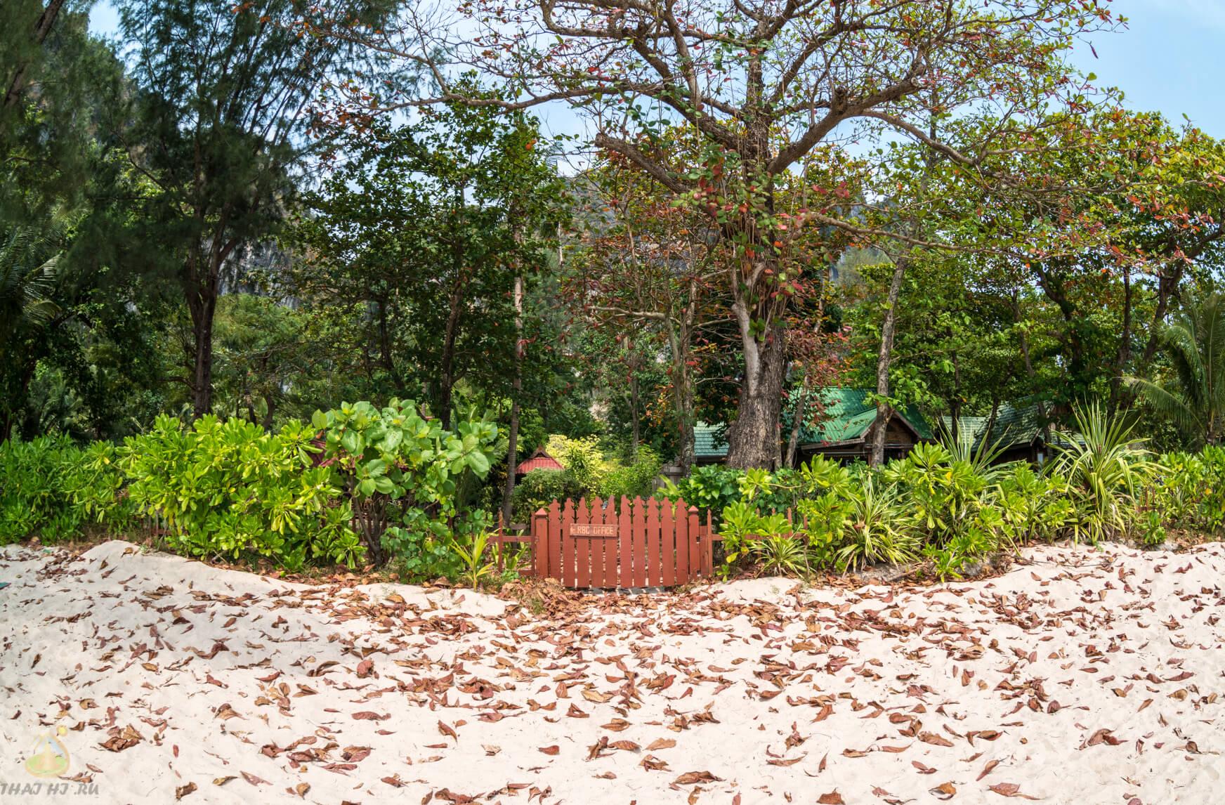 Деревца на пляже Ao Nang