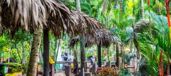 Парк Нонг Нуг, птицы и животные