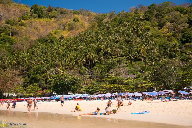 Пальмы на пляже Най Харн