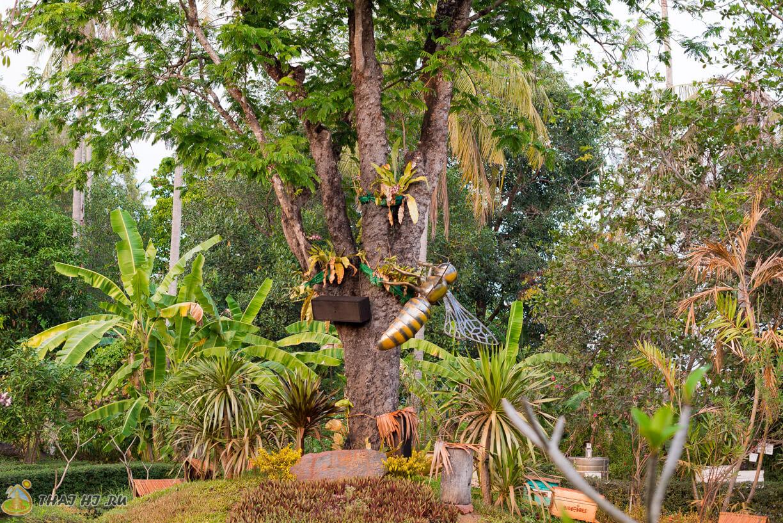 Пчелы на деревьях, Пхукет
