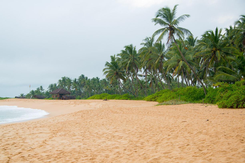 Пляж Tangalle фото